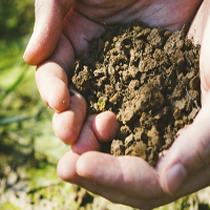 飯山市の土地・農地許認可の申請をお手伝いします